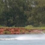 terceira etapa do brasileiro de wakeskate 2010
